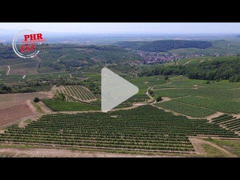 Projet Repère : la construction de solutions viticoles sur le terrain