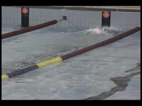 [수영] 수면위  접영