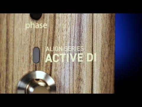 LR Baggs Align Active Acoustic DI Pedal