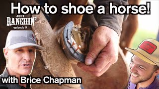How to shoe a horse with Brice Chapman  Just Ranchin 9