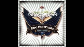 Foo Fighters- Cold Day In The Sun [HD]