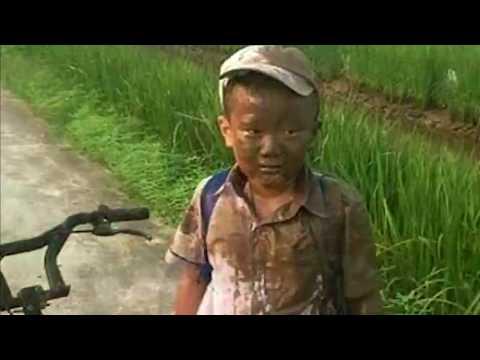 น่าเอ็นดู ด.ช.ขี่จักรยานตกคันนา ไม่เจ็บไม่ปวด แค่เสียขวัญเล็กน้อย และไม่ประสงค์ไปโรงเรียน