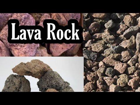 Lava Rock & Fish Aquarium