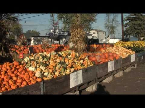 Great Getaways: Bart's Fruit Market - Houghton Lake, MI