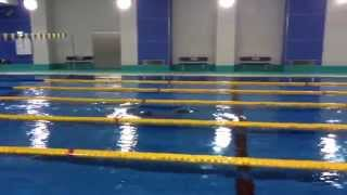 【JSB】佐藤久佳 2008年北京五輪400mメドレーリレー銅メダリスト/100m自由形日本人初の50秒&49秒突破