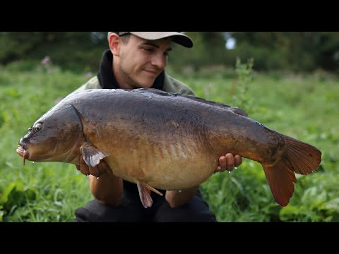 **River Carp Fishing** SCOPERS: Our River Highlights '18