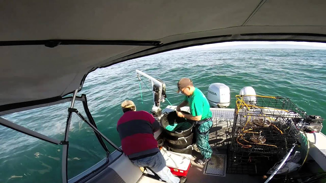 Half moon bay crabbing 11 8 14 limits for three youtube for Half moon bay fishing report