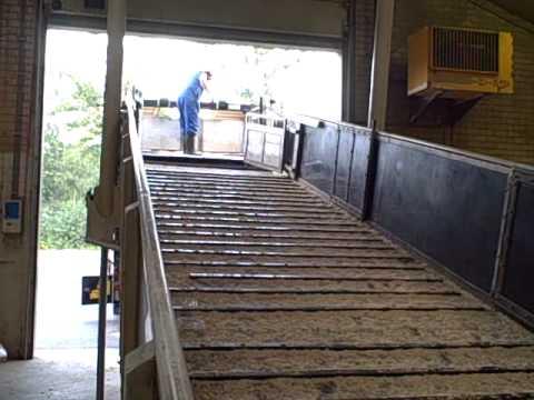 Berdex Livestock Loading Ramp