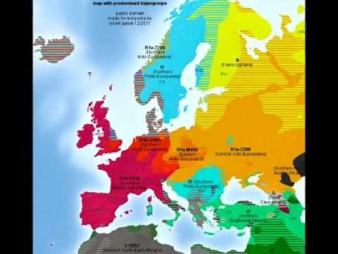 What Is The Difference Between R1a And R1b Haplogroups - MVlC