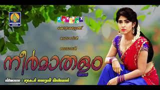 കൊട്ടാരമുറ്റത്തെ അന്തപുരത്തിലെ മിന്നാമിനുങ്ങിന് കല്യാണം | Malayalam Latest Juke Box