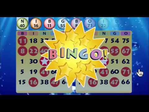 Bingo Blitz Download For Pc