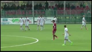 Castelvetro-Correggese 3-3 Serie D Girone D