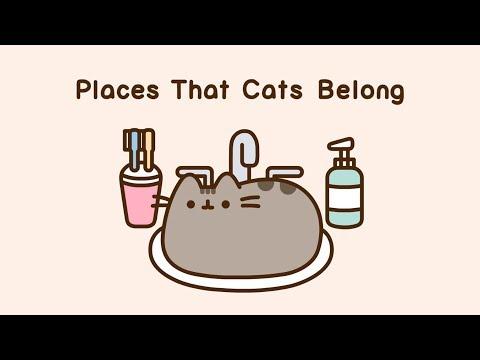 Pusheen: Places That Cats Belong