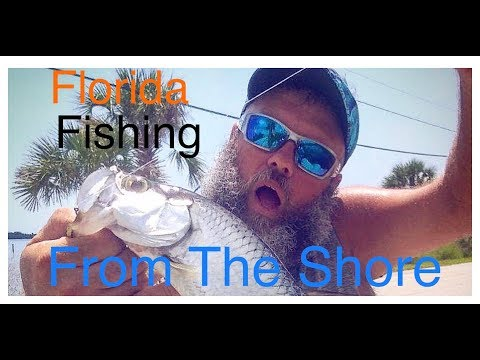 How To Catch Fish From The Shore In Daytona Beach Florida