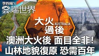 澳洲大火後 面目全非!山林地貌復原 恐需百年-李四端的雲端世界