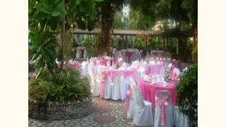 Butterfly Wedding Decoration 2015