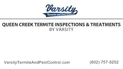 Queen Creek Termite Inspections & Treatments by Varsity Termite & Pest Control
