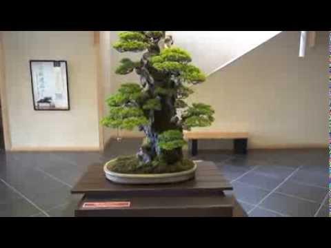 Masahiko Kimura Exhibition