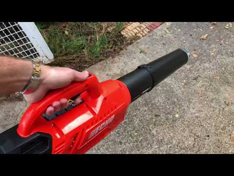 ECHO 58 Volt Brushless Lithium Ion Cordless Leaf Blower Product Review