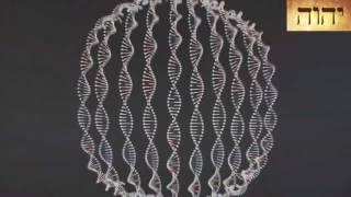 O nome de Deus (YHWH) no DNA humano