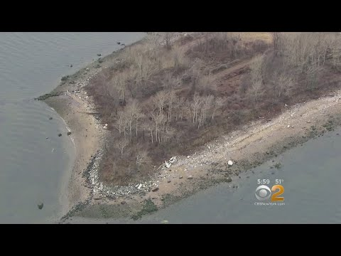 Bones From Hart Island Mass Graves Washing Up In Local Communities