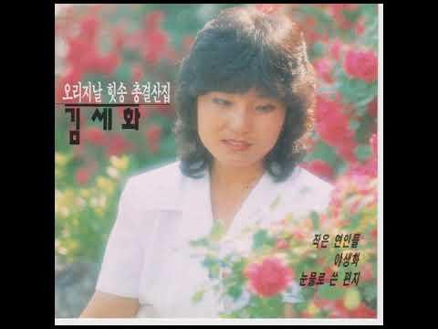 김세화  -  날이 갈수록
