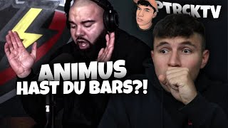 💯ER SCHIEßT BÖSE!!!...Reaktion : ANIMUS | Hast du Bars ?! | #freestyle6 | PtrckTV