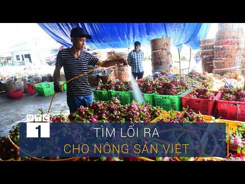 Nhận diện thực trạng và tìm lối ra cho nông sản Việt   VTC1