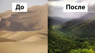 Как Китай Превратил Пустыню в Цветущие Сады