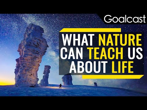 What Nature Can Teach Us About Life