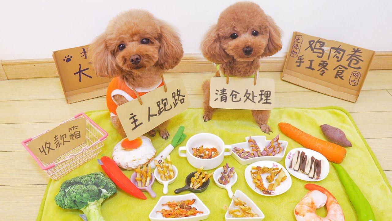 狗狗擺地攤賣零食能賺錢嗎?還沒開張就吃光,賠大了!【萌星人火龙果】