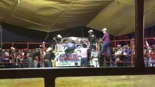 Rancho Las Cubatas Edición Limitada vs Moreno de Tetecala
