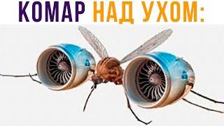 Я: ПЫТАЮСЬ УСНУТЬ. КОМАР НАД УХОМ))) Приколы | Мемозг 717 видео