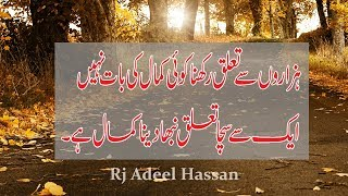 Download The Most Heart Touching Collection of Precious Words|Ameezing Urdu Quotations|Adeel Hassan|Urdu| MP3 song and Music Video