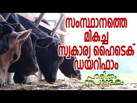 Outstanding Hi-Tech Dairy Farm in the State   Haritham Sundaram
