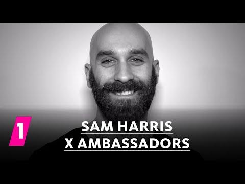 Sam Harris von X Ambassadors im 1LIVE Fragenhagel | 1LIVE (mit Untertiteln)