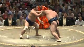 平成25年秋場所8日目 ひいちゃダメだね sumo 大相撲.