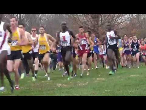 2015 NCAA MENS DIVISION 1 XC CHAMPIONSHIP