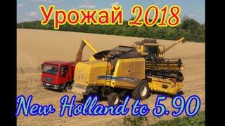 Уборка озимой пшеницы 2018.NewHolland TC5.90