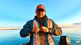 Рыбалка 2021 Увидели в эхолот огромную стаю рыбы и решили попробовать