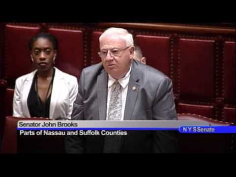 New York State Senate Session - 01/24/17