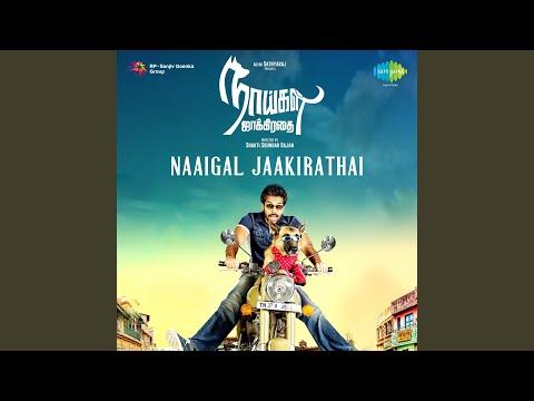 Theme Music (Naaigal Jaakirathai)