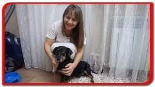 Fetita si cristalul #44 IOANA O lectie de viata Bogdan`s Show