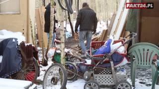 Obóz bezdomnych w warszawskim lesie. Nagraliśmy ten horror!