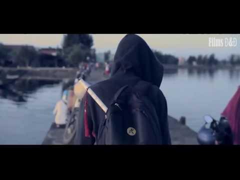 Alan Walker - Traveler( Music)