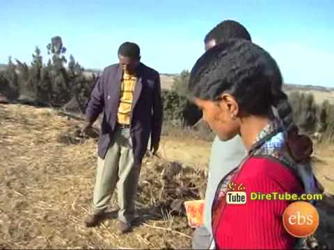 Discover Ethiopia: The 14th Century Town, Birth Place of Emperor Menelik II