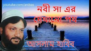 আসলাম হাবিব। নবীর দেখানো পথ। Aslam Habib Nabir dekhano poth bangla waz