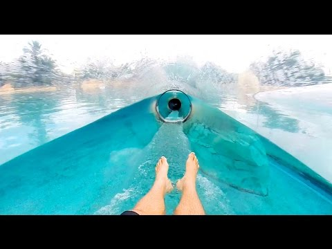 Dolphin Plunge : Aquarium Water Slide : HD POV - Aquatica Water Park (Orlando, Florida)