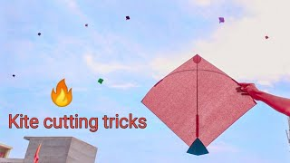 Kite cutting tricks with the help of dummy kites ||