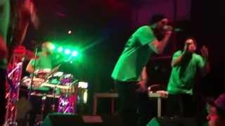 Looptroop Rockers - Guru RIP, live @ Openair Oberrieden, 07.06.2013